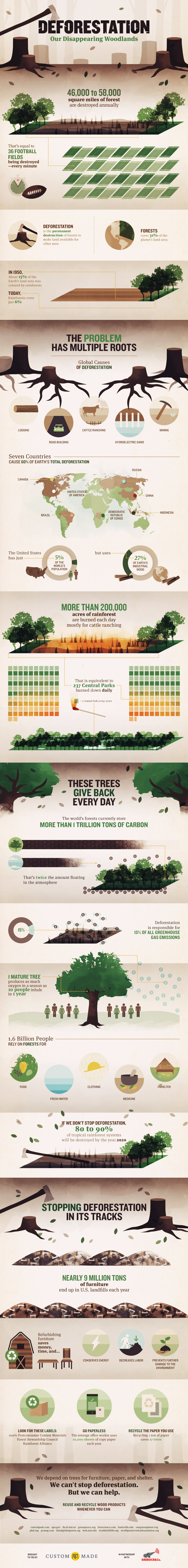 200,000+ Acres of Rainforest are Burned EACH Day.